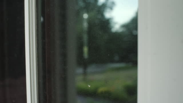 reflections in suburban window - tracking shot stock videos & royalty-free footage