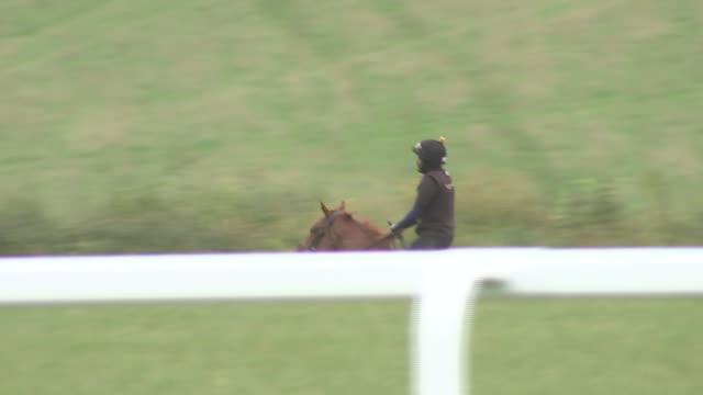refugee and aspiring jockey working at racehorse stables england berkshire newbury kingsclere stables ext various of abdulkareem musa adam riding... - newbury west berkshire stock-videos und b-roll-filmmaterial