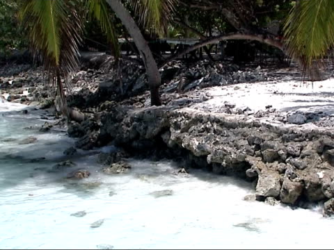 refugee camp / family visit deserted island / air views Maldives / GVs shoreline / divers Deserted beach with white sand and palm trees PAN water...