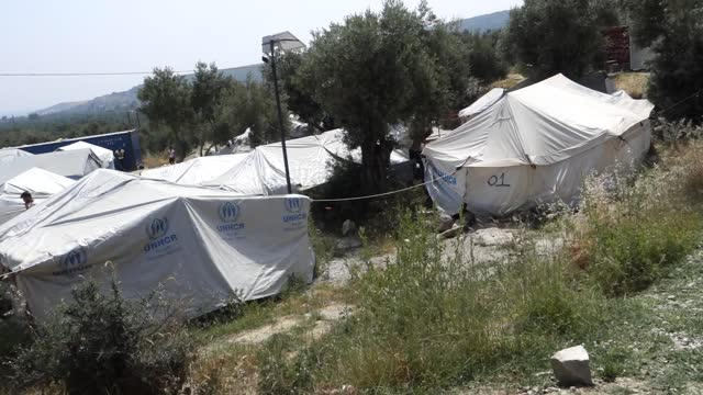 refugees congregate outside moria refugee camp and its informal overflow camp known as the olive grove on may 14, 2018 in mitilini, greece. refugees... - orchard stock videos & royalty-free footage