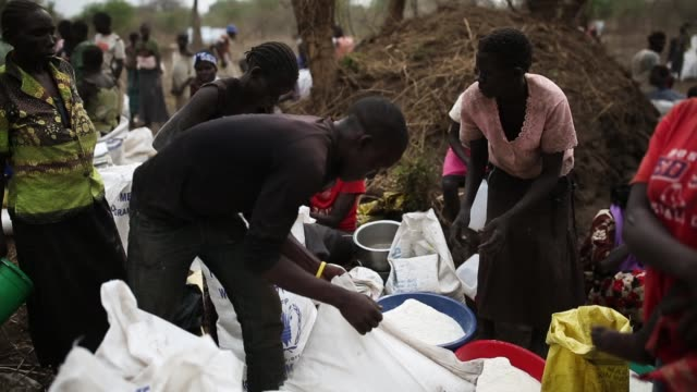 refugees share their allocated amount of maize flour at a refugee settlement on february 25 2017 in palorinya uganda after registering their details... - charity and relief work stock videos & royalty-free footage