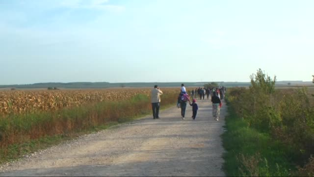 refugees walk towards the serbia's border town sid to cross croatian border after hungarian authorities closed their border on september 16, 2015.... - hungary stock videos & royalty-free footage