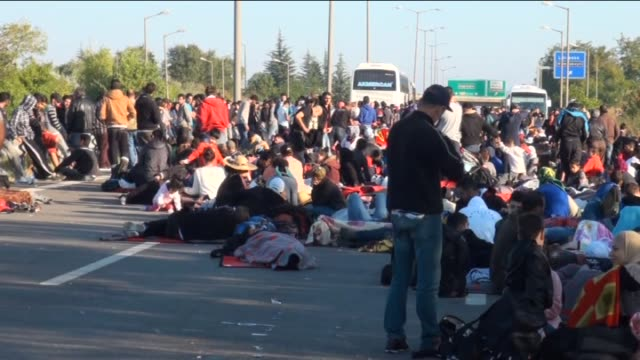 vídeos de stock, filmes e b-roll de refugees who want to go to europe sit on tem highway in edirne turkey on september 19 2015 turkish security forces stops the refugees on the way to... - micrografia científica