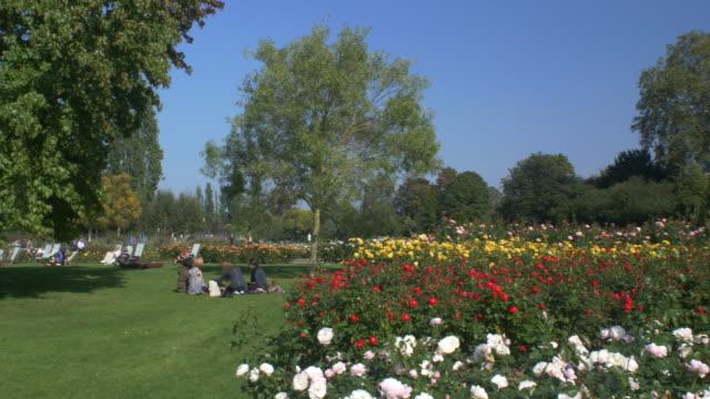 vídeos de stock, filmes e b-roll de regents park rose garden.4k. - parque regents
