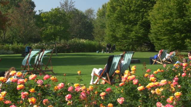 regents park rose garden.4k. - public park stock videos & royalty-free footage