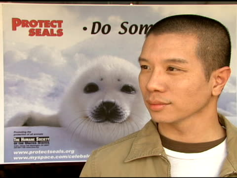 reggie lee at the celebrity save the seal day: press conference hosted by celebrities against the seal hunt on march 28, 2007. - aquatic organism stock videos & royalty-free footage
