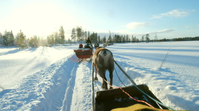 reindeer sleigh ride - sledge stock videos & royalty-free footage