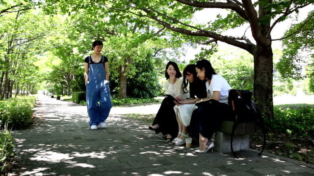 relaxed walk in the park - lypsekyo16 stock videos and b-roll footage