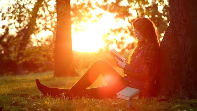 vídeos de stock, filmes e b-roll de relaxante e aconchegante leitura cantos - livro