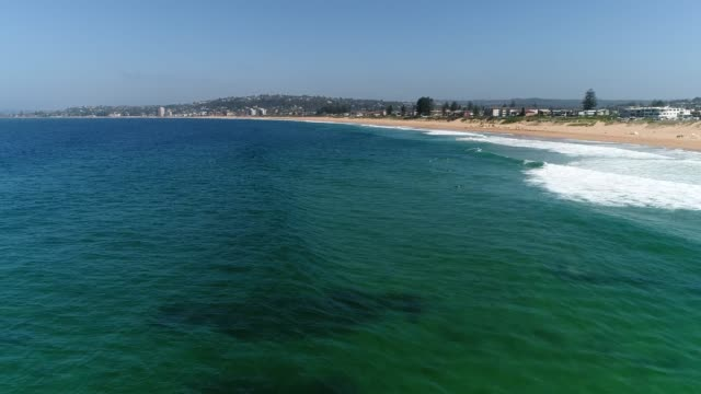 relaxing people at pristine narrabeen beach surfing and swimming in calm gentle waves of pacific ocean on sunny day. - tide stock videos & royalty-free footage