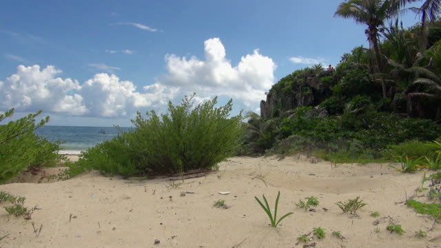 A Relaxing View of the Beach in Tulum Mexico