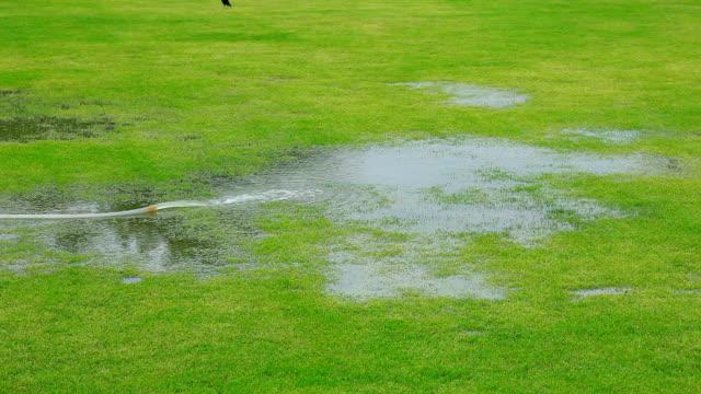 リリースの芝生にします。 - 水泳用浮き輪点の映像素材/bロール