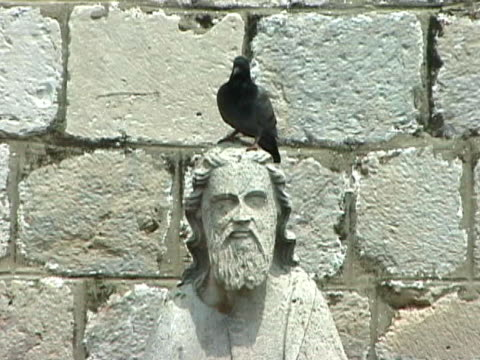 religious pigeon - apostle stock videos and b-roll footage