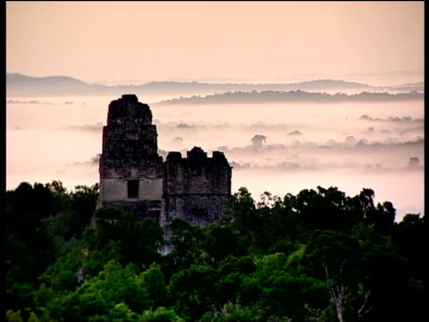 remains of ancient city of maya amidst guatemalan rainforest - mayan stock videos and b-roll footage