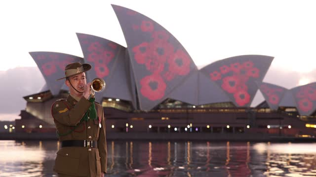 remembrance day 2020 marks 102 years since the armistice that ended the first world war on 11 november 1918. almost 62,000 australians died fighting... - remembrance day stock videos & royalty-free footage