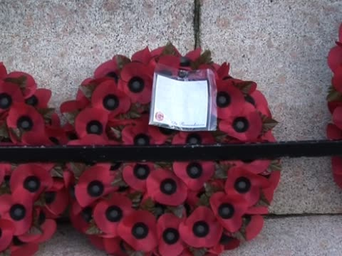 remembrance day poppy wreaths 1 - armistice day stock videos and b-roll footage