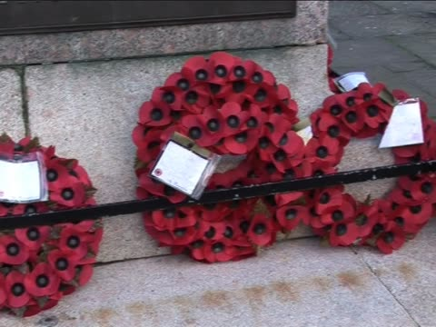 remembrance day poppy wreaths 2 - armistice stock videos and b-roll footage