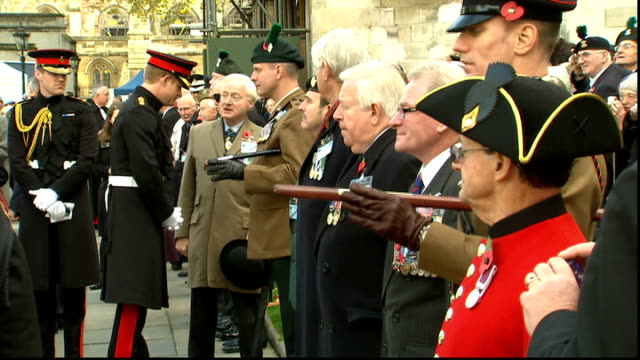 remembrance day: prince harry visits field of remembrance; more of harry chatting and shaking hands with waiting veterans and others attending event... - witwe stock-videos und b-roll-filmmaterial