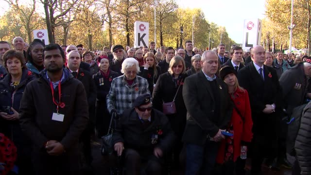 people's procession on the mall; england: london: the mall:extpeople standing for two minute silence / general views of people in crowd . - remembrance sunday stock videos & royalty-free footage