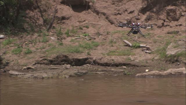 remote control camera boat floats near a crocodile - クロコダイル点の映像素材/bロール