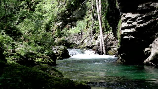 Fernbedienung Hubschrauber im malerischen river gorge