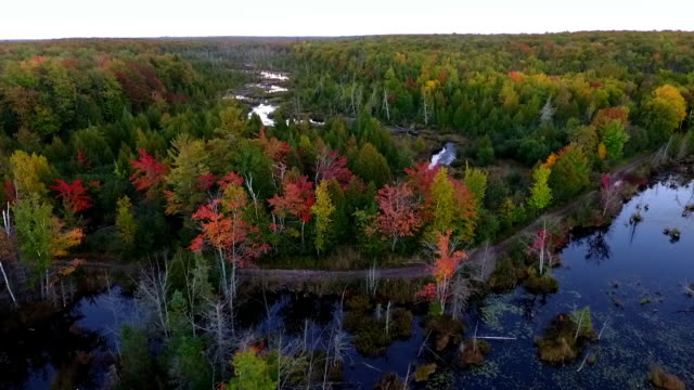 vidéos et rushes de remote lake and river  in the upper peninsula of michigan from above - michigan