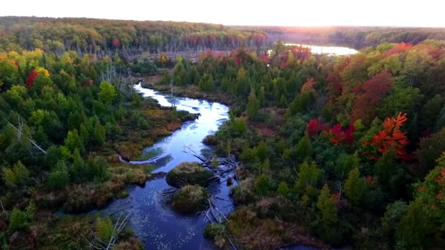 remote lake and river  in the upper peninsula of michigan from above - michigan stock videos and b-roll footage
