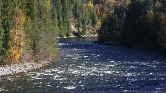 remote river in british columbia, wide - wilderness stock videos & royalty-free footage