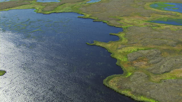 vidéos et rushes de remote wetlands landscape in alaska - hémisphère nord