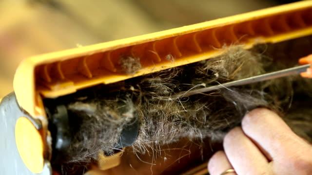 Entfernen von Haaren aus Vakuum-Reiniger