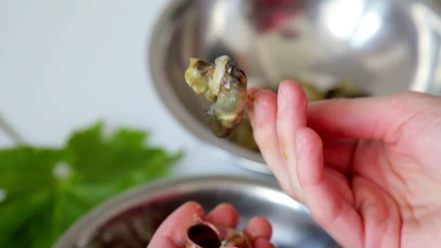 removing snails from shells - french food stock videos & royalty-free footage