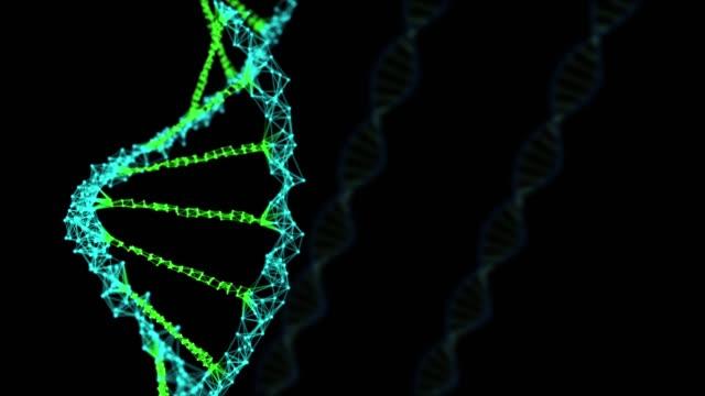 vídeos de stock, filmes e b-roll de 3d render dna girando em fundo escuro, conceito abstrato química - biologia