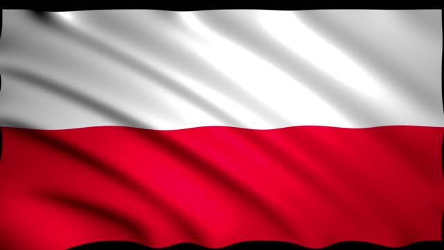 vídeos de stock, filmes e b-roll de renderização 3d bandeira da polónia - bandeira