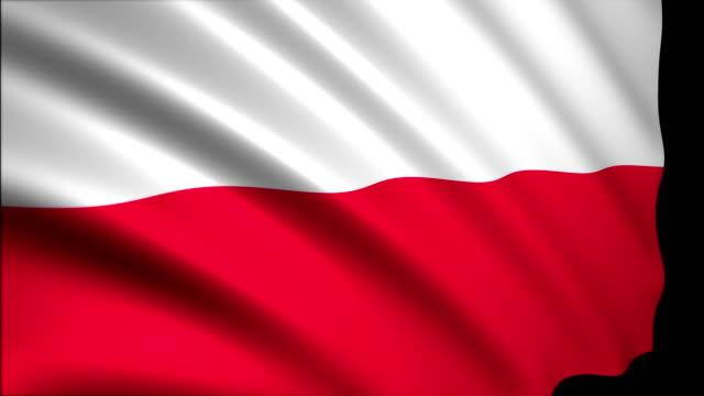 3D-Rendering Flagge Polens