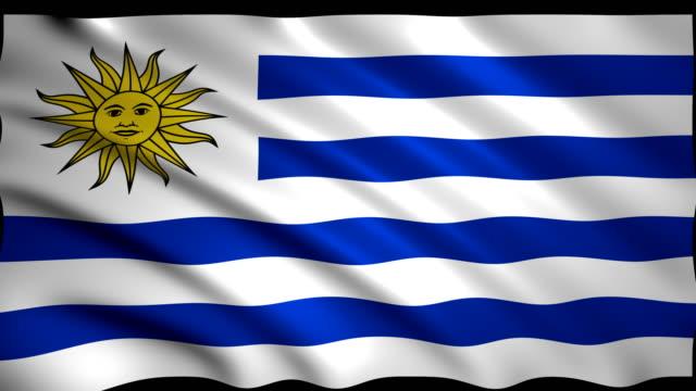 3d rendering flag of uruguay - uruguaian flag stock videos & royalty-free footage
