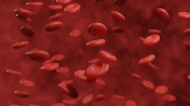 3d rendering microscopic motion graphic of red blood cell background - vena video stock e b–roll