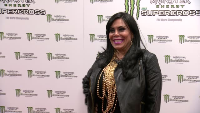 renee graziano at monster energy supercross world championship race at metlife stadium on april 26 2014 in east rutherford new jersey - world championship stock videos & royalty-free footage