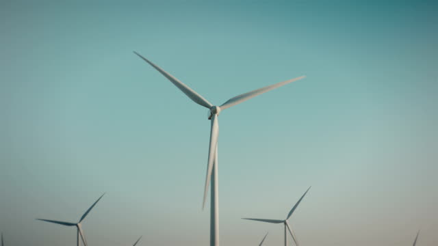 renewable innovative energy wind farm in the rural ranches of latin america. juxtaposing technology and nature working together - collection - tree hugging stock videos & royalty-free footage