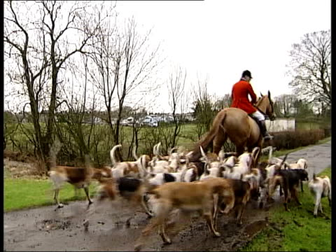 Renfrewshire EXT GV Hunt riders and fox hounds along MS Hunt rider along MS Hounds along beside horse Alisdair Campbell interview SOT what we do is...