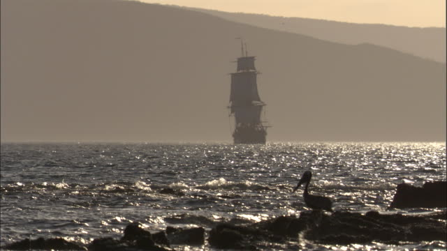 replica of hms endeavour under full sail in golden light. - sail stock videos & royalty-free footage