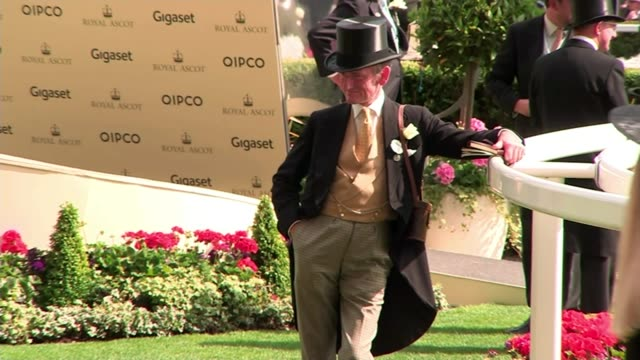 report from ascot on higher wages high angle shot of enclosure and punters punters along bv woman drinking champagne man in morning suit and top hat... - enclosure stock videos & royalty-free footage