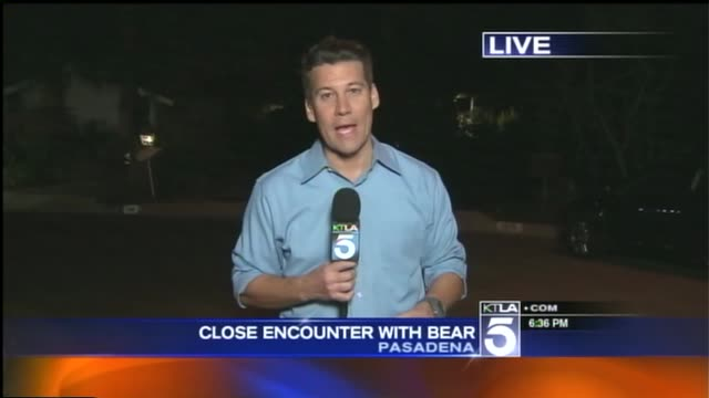 KTLA Reporter intro to story of bear approaching couple in Pasadena