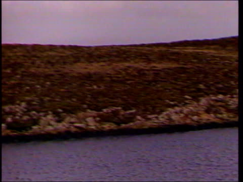 stockvideo's en b-roll-footage met reporters at war collection 2 slate information 1982 when the falkland islands were invaded by argentina michael nicholson reached the islands with... - falklandeilanden