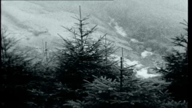 vídeos y material grabado en eventos de stock de river severn floods england shropshire shrewsbury car slowly along thru floodwater / sign 'road closed' / swirling water in high street / swollen... - shrewsbury