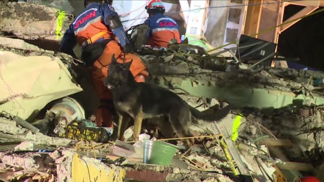 rescuers pull a body from the ruins of an apartment block in mexico city five days after the 71 tremor rocked the heart of the megacity toppling... - pulling stock videos & royalty-free footage