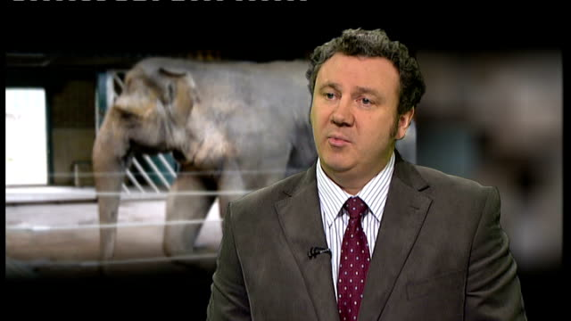 Research into lifespan of elephants in captivity ENGLAND London INT Robert Atkinson interview SOT