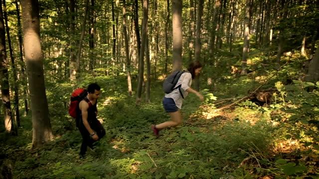 Onderzoek van de bossen, groep van jonge wandelaars