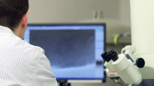 researcher analyzing scientific samples on computer monitor - microscopio elettronico a scansione video stock e b–roll