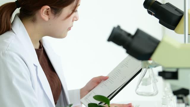 vídeos y material grabado en eventos de stock de researcher of oriental medicine is studying chinese medicine. - orgánico