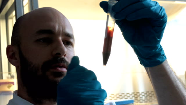 researcher - medical sample stock videos & royalty-free footage